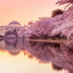 A Spring Weekend in Washington D.C