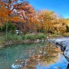A Texan Fall Foliage